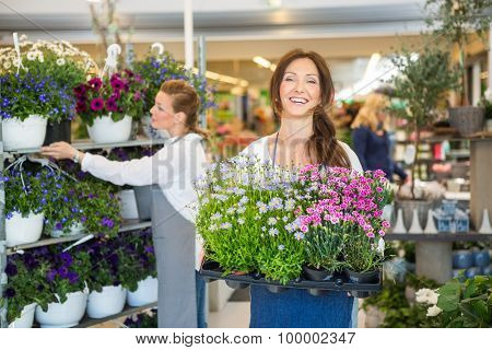 Portrait of smiling florist carrying crate full of flower plants with colleague working in background