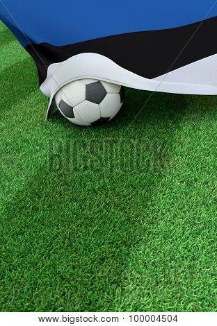 Soccer Ball And National Flag Of Estonia,  Green Grass