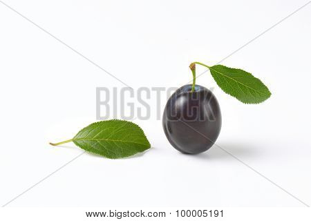 ripe plum with leaves on white background