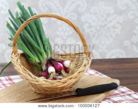 Freshly Harvested Spring Onion In A Basket With Copy Space.