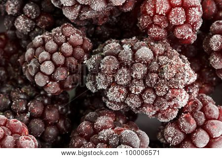Several frozen blackberries