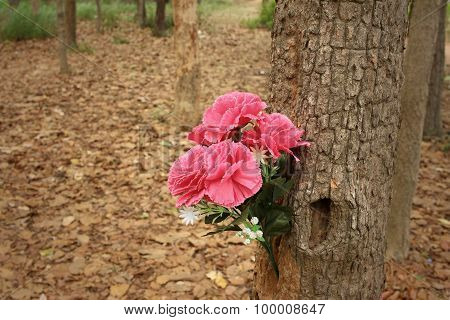 Pink Flowers In Nature At The Forest.
