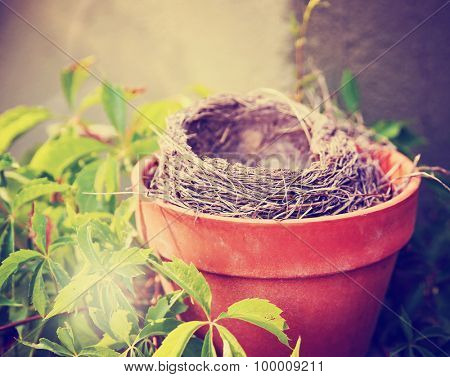 an empty bird nest in a terra cotta pot surrounded by vines and leaves  toned with a warm instagram filter