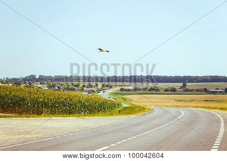 View On Asphalt Road In Countryside