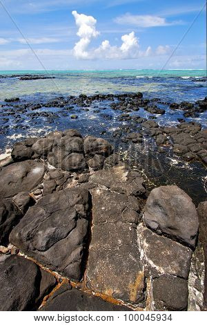 Foam  Indian Ocean Some Stone In The Island