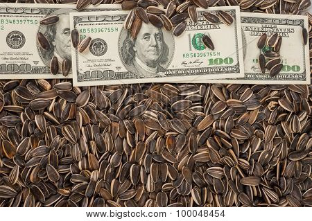 Sunflower seeds and dollars