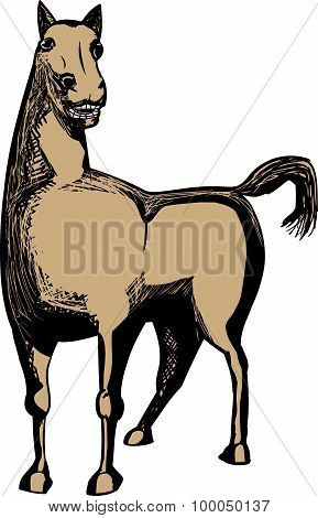 Single Brown Horse