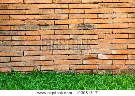 Brick Wall And Green Grass