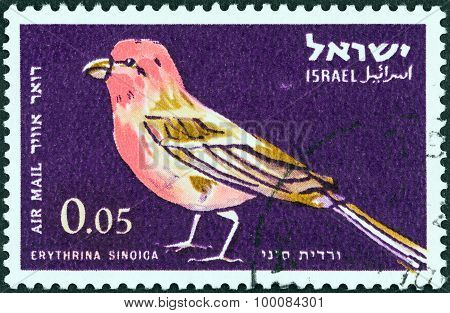 ISRAEL - CIRCA 1963: A stamp printed in Israel shows Sinai rosefinch (Carpodacus synoicus)