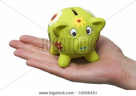 piggy bank on a hand isolated on white background