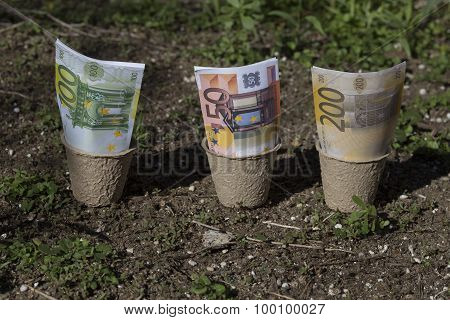 banknotes in the pots