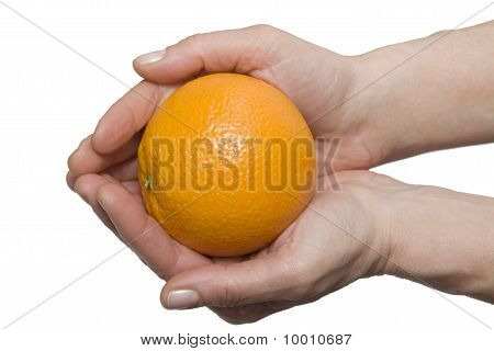 oranges in one hand
