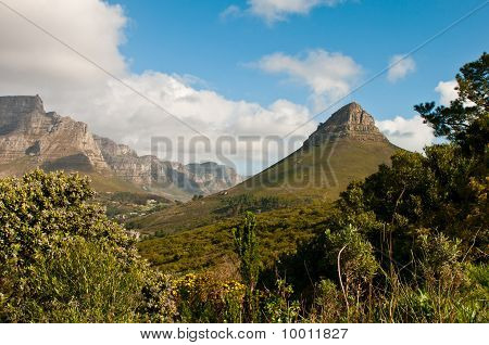 Lions Head Part Of Table Mountain