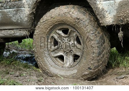 Wheel Covered With Mud