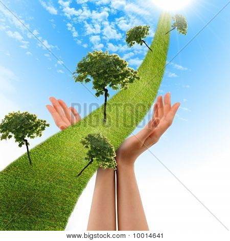 Hand, The Line Of Grass,