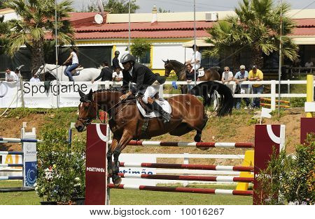 INTERNATIONAL SHOW JUMPING