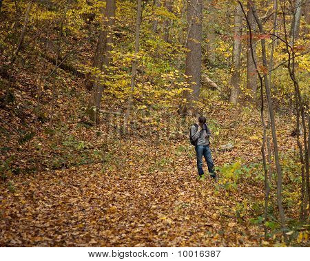 Young Male Hiker Checks Directions