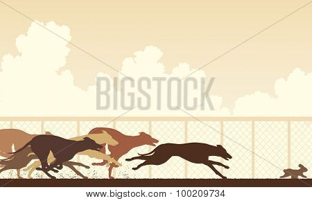 Illustration of greyhound dogs racing around a track