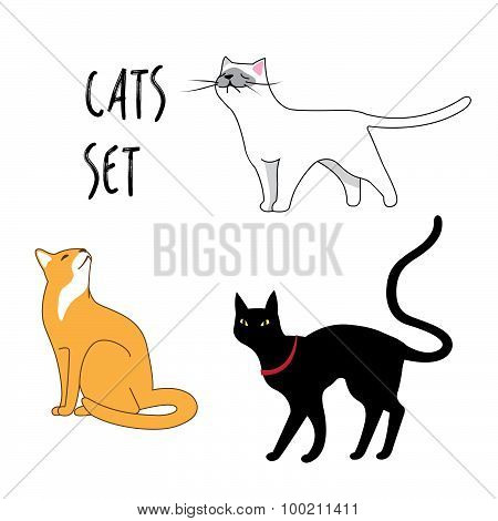 set of the vector cats