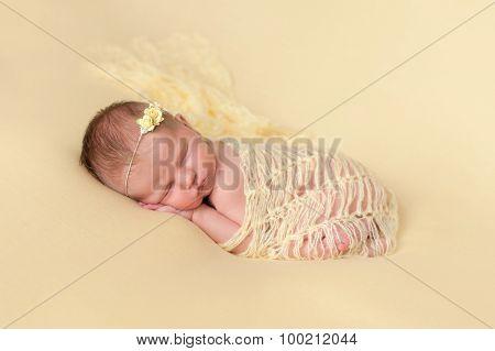Sleeping Newborn Baby Girl Swaddled In Yellow