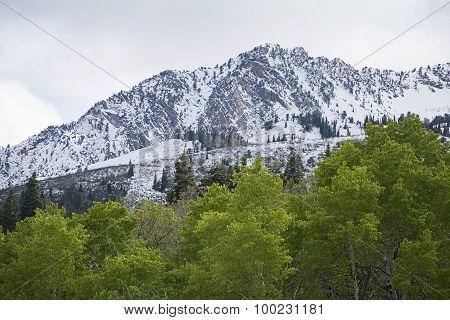 snow peak mountain