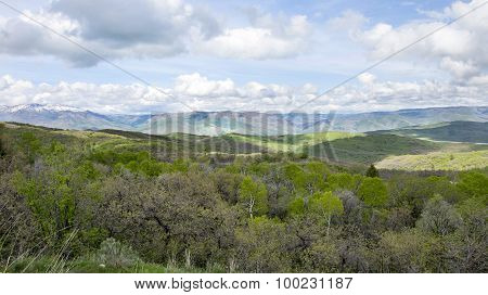 green rolling hills and blue mountains