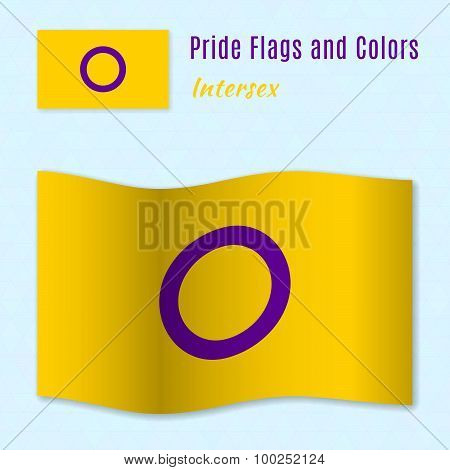 Intersex Pride Flag With Correct Color Scheme