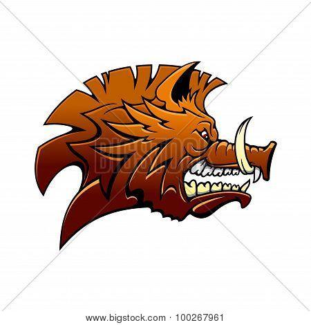 Head of a fierce snarling wild boar