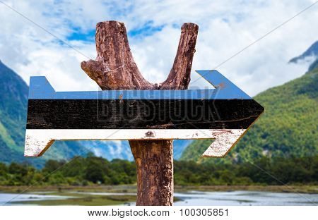 Estonia Flag wooden sign with landscape on background poster