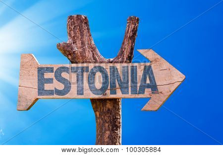 Estonia wooden sign with sky background poster