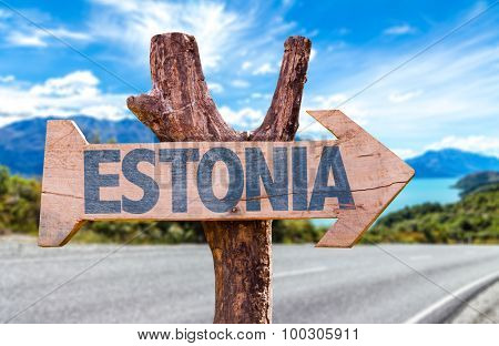 Estonia wooden sign with road background poster