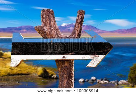 Estonia Flag wooden sign with lake background poster