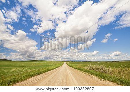 Prairie Road Landscape