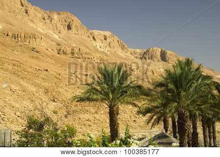 Orange Judean Mountains