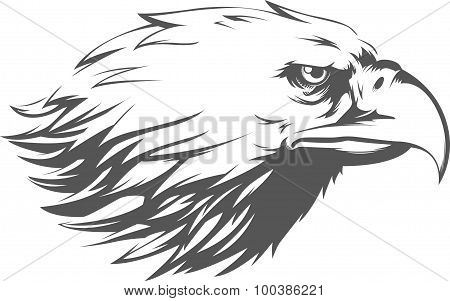 Eagle Head Vector - Side View Silhouette