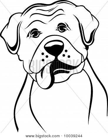 Black And White Boxer Cartoon