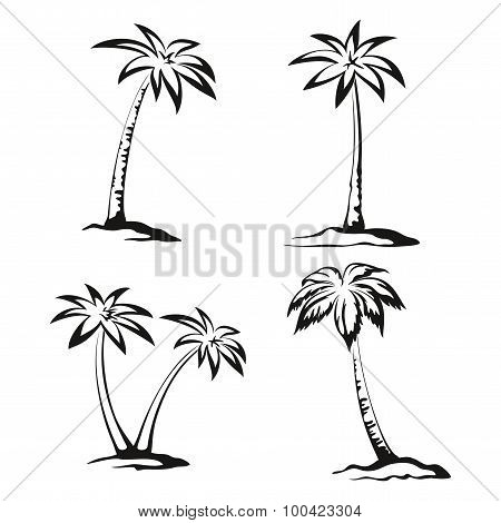 Palm Trees Black Pictograms