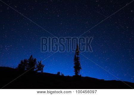 Wyoming Night Sky