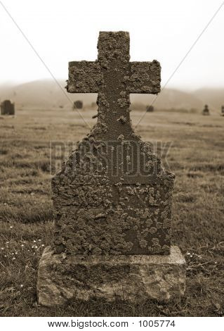 Lichen Covered Tombstone