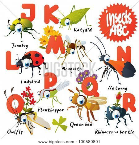 Cute vector animals ABC: Insects: junebug, katydid, netwing, mosquito, ladybug, queen bee, owlfly, rhinoceros beetle, grasshopper