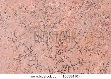 Dendrite On Sandstone Formation
