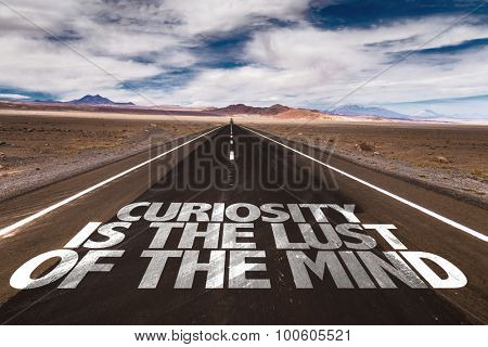 Curiosity Is The Lust of the Mind written on desert road