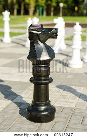 Chessman knight is in the street on the stone chessboard
