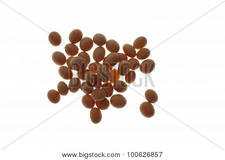Soybean, Glycine Max, From Organic Production
