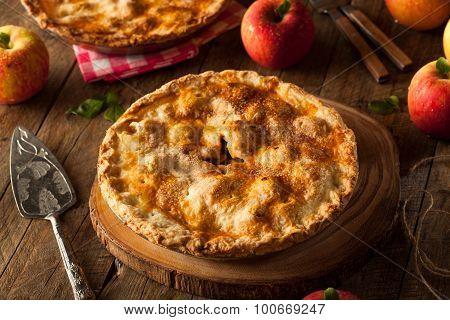Fresh Homemade Apple Pie