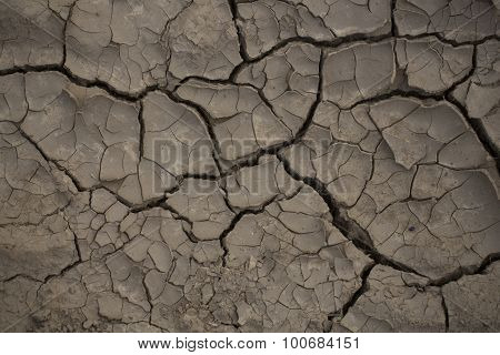 Cracked Brown Ground