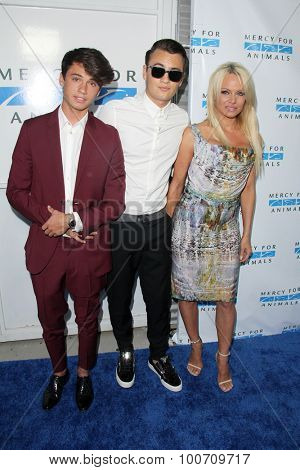 LOS ANGELES - AUG 29:  Pamela Anderson, Dylan Jagger Lee, Brandon Thomas Lee at the Mercy For Animals Hidden Heroes Gala at the Unici Casa on August 29, 2015 in Culver City, CA