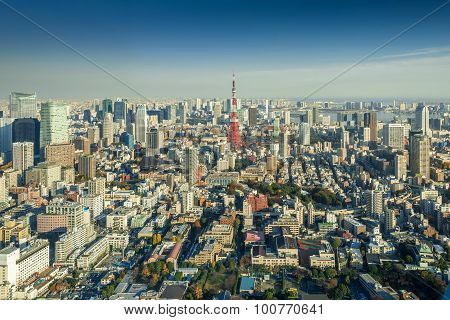 Skyline Of Tokyo Cityscape With Tokyo Tower, Japan
