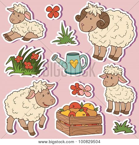 Farm Animals Set, Vector Stickers With Sheep Family And Farm Items