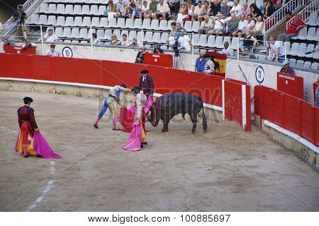 Bullfighting, A Spanish National Amusement